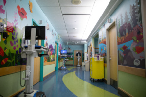 Murals in pediatrics unit